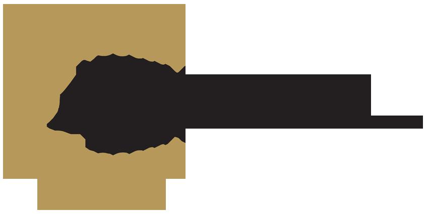 ATX Endo